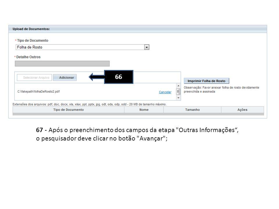 67 - Após o preenchimento dos campos da etapa Outras Informações, o pesquisador deve clicar no botão Avançar ; 66