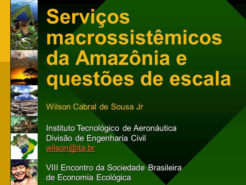 Serviços macrossistêmicos da Amazônia e questões de escala Wilson Cabral de Sousa Jr Instituto Tecnológico de Aeronáutica Divisão de Engenharia Civil