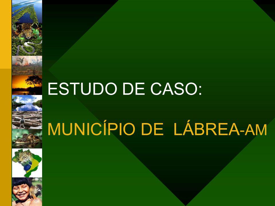 ESTUDO DE CASO: MUNICÍPIO DE LÁBREA -AM