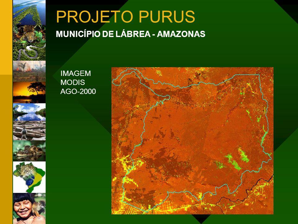 PROJETO PURUS MUNICÍPIO DE LÁBREA - AMAZONAS IMAGEM MODIS AGO-2000