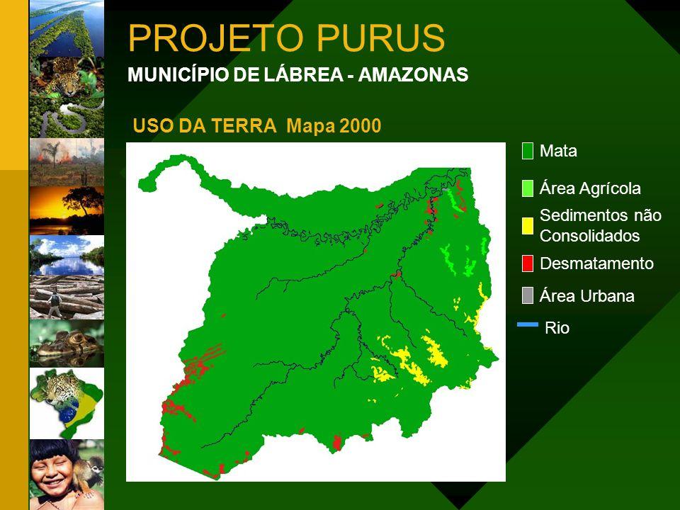 PROJETO PURUS MUNICÍPIO DE LÁBREA - AMAZONAS Mata Área Agrícola Sedimentos não Consolidados Desmatamento Área Urbana USO DA TERRA Mapa 2000 Rio