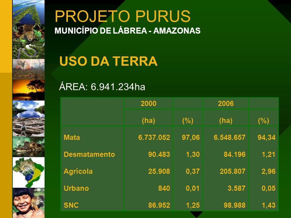 PROJETO PURUS MUNICÍPIO DE LÁBREA - AMAZONAS ÁREA: 6.941.234ha 2000 2006 (ha)(%)(ha)(%) Mata6.737.05297,066.548.65794,34 Desmatamento90.4831,3084.1961
