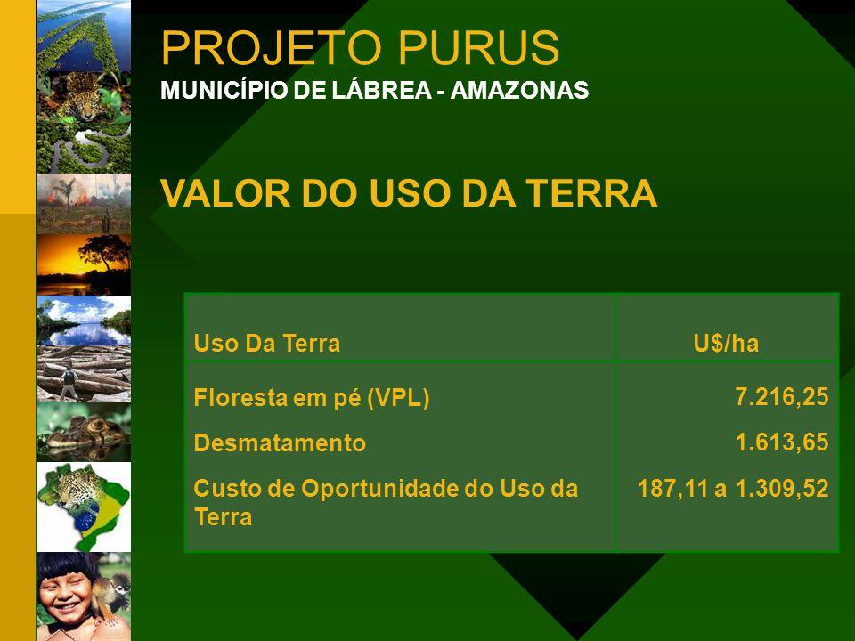 PROJETO PURUS MUNICÍPIO DE LÁBREA - AMAZONAS VALOR DO USO DA TERRA Uso Da TerraU$/ha Floresta em pé (VPL) Desmatamento Custo de Oportunidade do Uso da