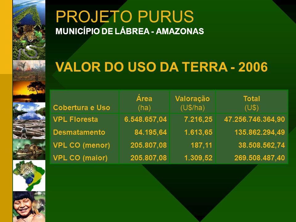 PROJETO PURUS MUNICÍPIO DE LÁBREA - AMAZONAS VALOR DO USO DA TERRA - 2006 Cobertura e Uso Área (ha) Valoração (U$/ha) Total (U$) VPL Floresta Desmatam