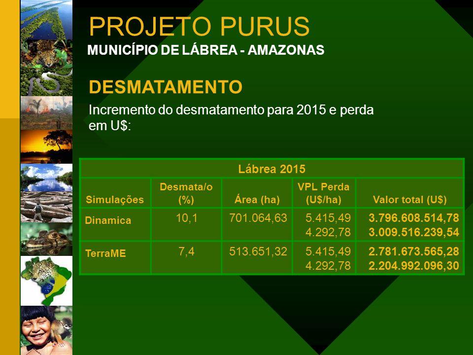 PROJETO PURUS MUNICÍPIO DE LÁBREA - AMAZONAS DESMATAMENTO Incremento do desmatamento para 2015 e perda em U$: Lábrea 2015 Simulações Desmata/o (%)Área