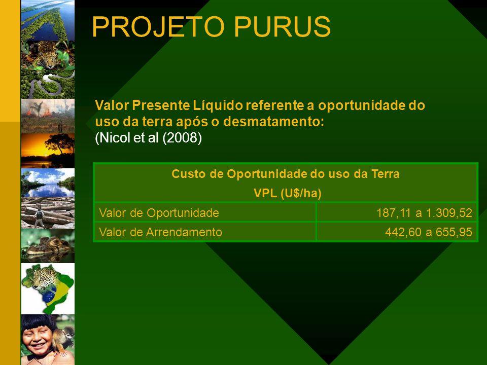 Valoração do Desmatamento e Custo de Oportunidade da Terra Menor Valor (U$/ha)Maior Valor (U$/ha) Desmatamento1.613,65 CO (VPL)187,111.309,82 Total (VPL em 40 anos) 1.800,762.923,47 Valoração da Perda da Floresta em Pé (O quanto deixa de ganhar) Menor CO (U$/ha) Maior CO (U$/ha) VPL Floresta (VPL)7.216,25 VPL Desmatamento + CO1.800,762.923,47 VPL Perda da Floresta em Pé (VPL em 40 anos) 5.415,494.292,78 CO: Custo de Oportunidade PROJETO PURUS