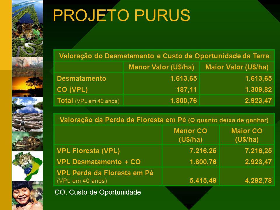 Valoração do Desmatamento e Custo de Oportunidade da Terra Menor Valor (U$/ha)Maior Valor (U$/ha) Desmatamento1.613,65 CO (VPL)187,111.309,82 Total (V