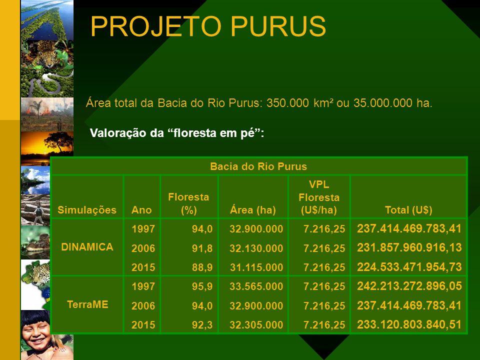PROJETO PURUS MUNICÍPIO DE LÁBREA - AMAZONAS VALOR DO USO DA TERRA - 2006 Cobertura e Uso Área (ha) Valoração (U$/ha) Total (U$) VPL Floresta Desmatamento VPL CO (menor) VPL CO (maior) 6.548.657,04 84.195,64 205.807,08 7.216,25 1.613,65 187,11 1.309,52 47.256.746.364,90 135.862.294,49 38.508.562,74 269.508.487,40