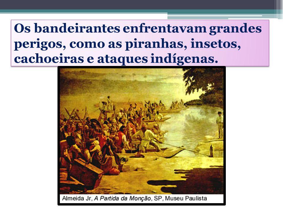 Os bandeirantes enfrentavam grandes perigos, como as piranhas, insetos, cachoeiras e ataques indígenas.