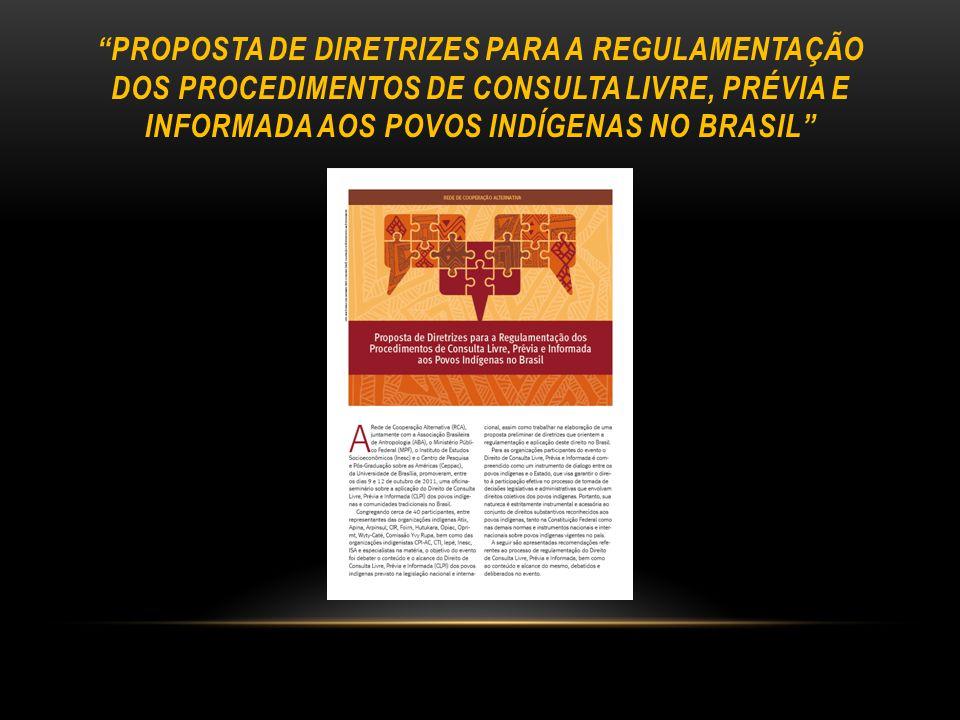 PROPOSTA DE DIRETRIZES PARA A REGULAMENTAÇÃO DOS PROCEDIMENTOS DE CONSULTA LIVRE, PRÉVIA E INFORMADA AOS POVOS INDÍGENAS NO BRASIL