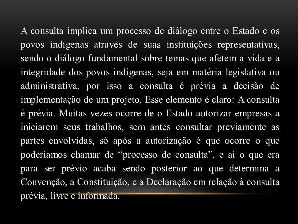 A consulta implica um processo de diálogo entre o Estado e os povos indígenas através de suas instituições representativas, sendo o diálogo fundamenta