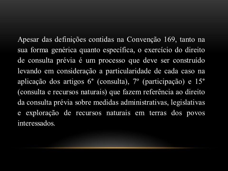 Apesar das definições contidas na Convenção 169, tanto na sua forma genérica quanto específica, o exercício do direito de consulta prévia é um process