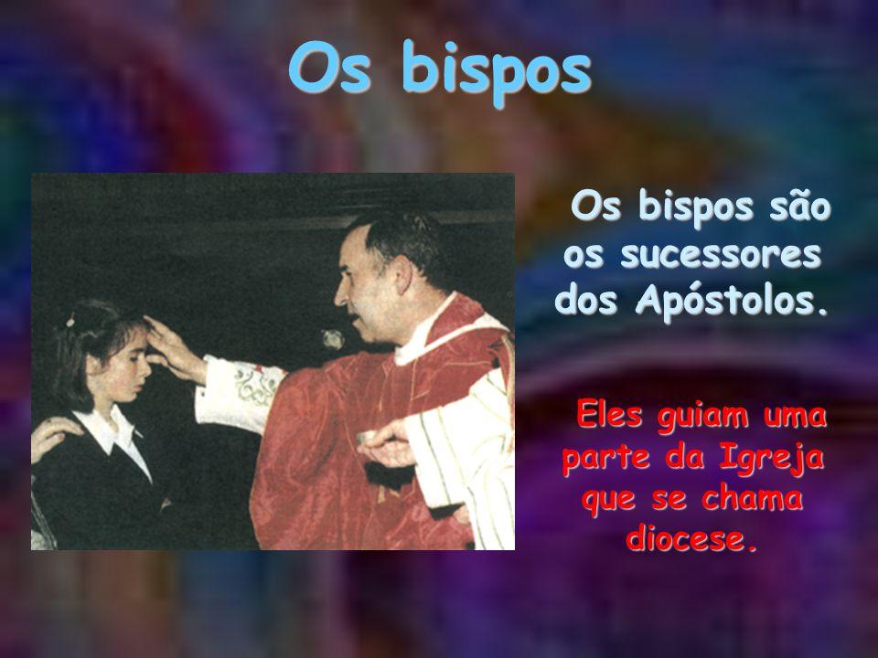 O Papa O Papa é o sucessor do apóstolo São Pedro e bispo de Roma. Guia todos os cristãos em nome de Jesus. O Papa é o sucessor do apóstolo São Pedro e