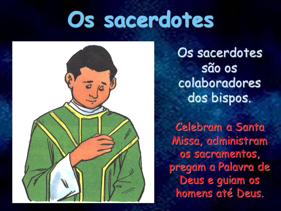 Os bispos Os bispos são os sucessores dos Apóstolos. Os bispos são os sucessores dos Apóstolos. Eles guiam uma parte da Igreja que se chama diocese. E