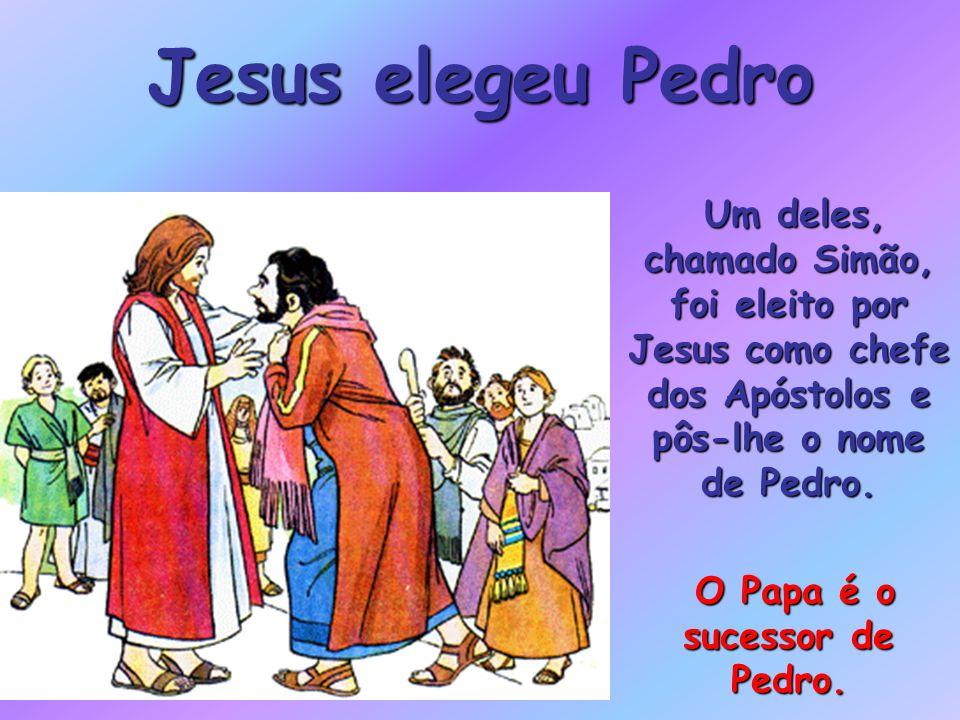 Jesus elegeu Pedro Um deles, chamado Simão, foi eleito por Jesus como chefe dos Apóstolos e pôs-lhe o nome de Pedro.
