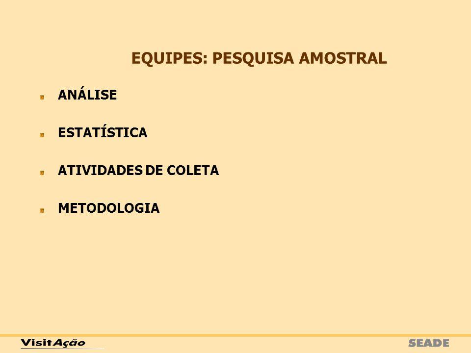 ANÁLISE ESTATÍSTICA ATIVIDADES DE COLETA METODOLOGIA EQUIPES: PESQUISA AMOSTRAL