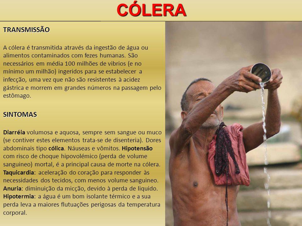 CÓLERATRANSMISSÃO A cólera é transmitida através da ingestão de água ou alimentos contaminados com fezes humanas. São necessários em média 100 milhões
