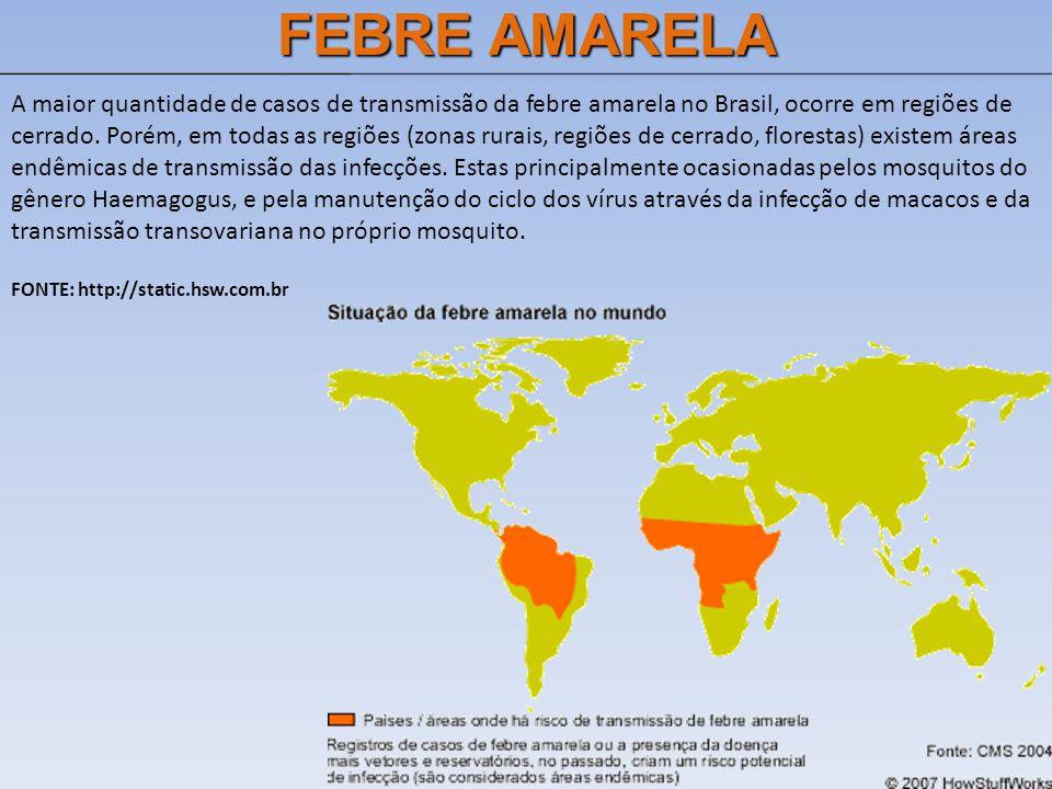 FEBRE AMARELA A maior quantidade de casos de transmissão da febre amarela no Brasil, ocorre em regiões de cerrado. Porém, em todas as regiões (zonas r