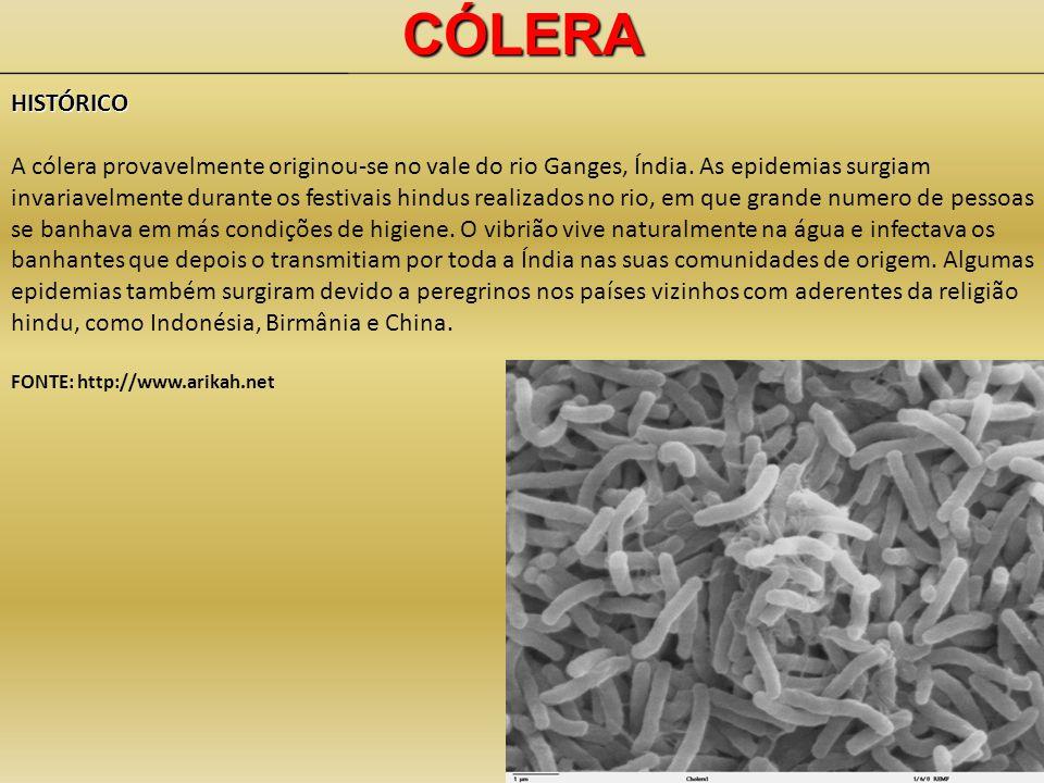 CÓLERAHISTÓRICO A cólera provavelmente originou-se no vale do rio Ganges, Índia.