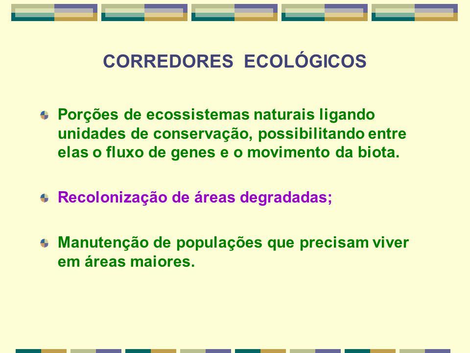 CORREDORES ECOLÓGICOS Porções de ecossistemas naturais ligando unidades de conservação, possibilitando entre elas o fluxo de genes e o movimento da bi