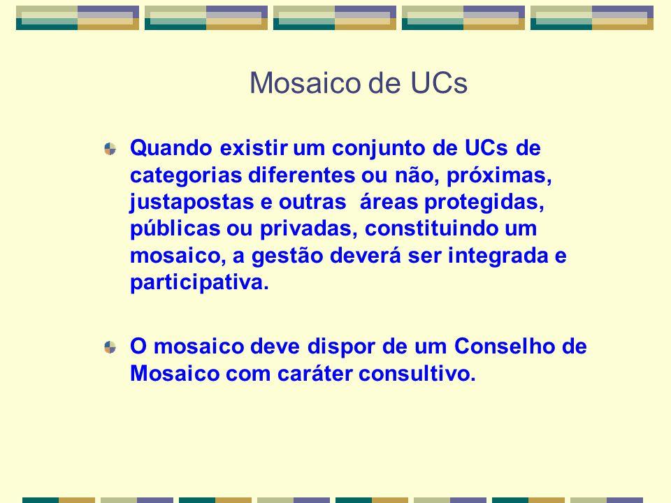 Mosaico de UCs Quando existir um conjunto de UCs de categorias diferentes ou não, próximas, justapostas e outras áreas protegidas, públicas ou privada