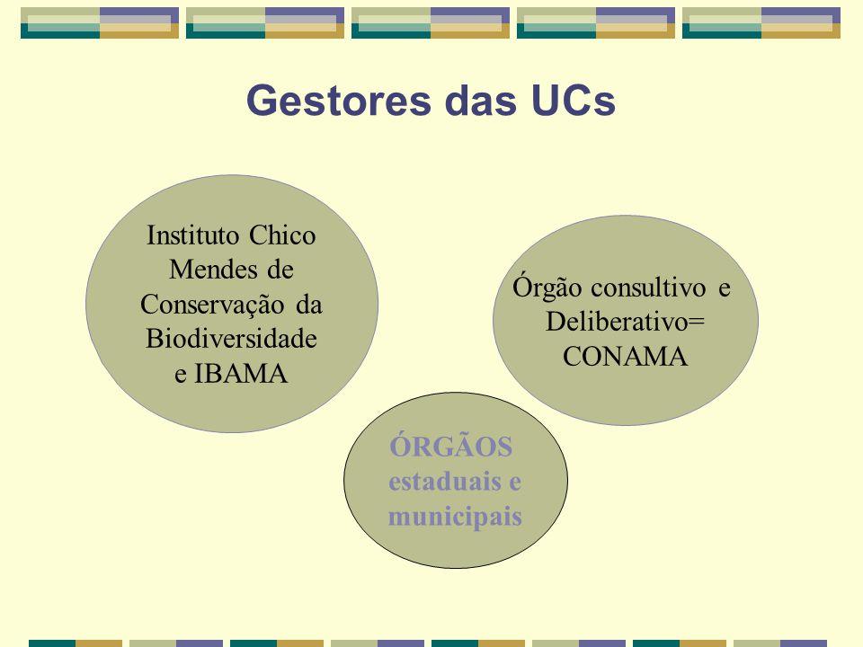 Gestores das UCs Instituto Chico Mendes de Conservação da Biodiversidade e IBAMA Órgão consultivo e Deliberativo= CONAMA ÓRGÃOS estaduais e municipais