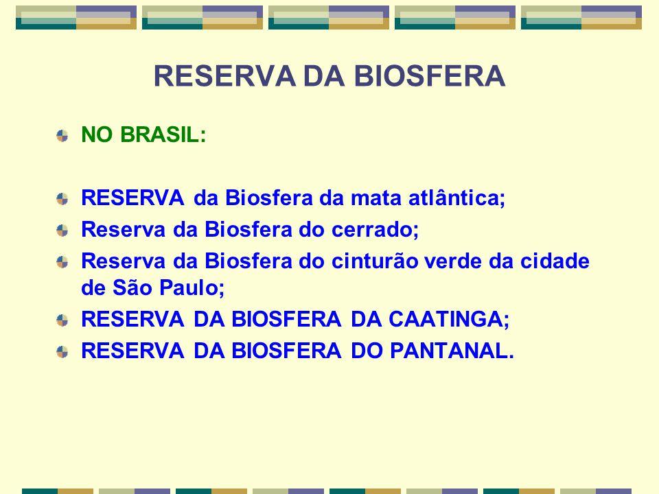RESERVA DA BIOSFERA NO BRASIL: RESERVA da Biosfera da mata atlântica; Reserva da Biosfera do cerrado; Reserva da Biosfera do cinturão verde da cidade
