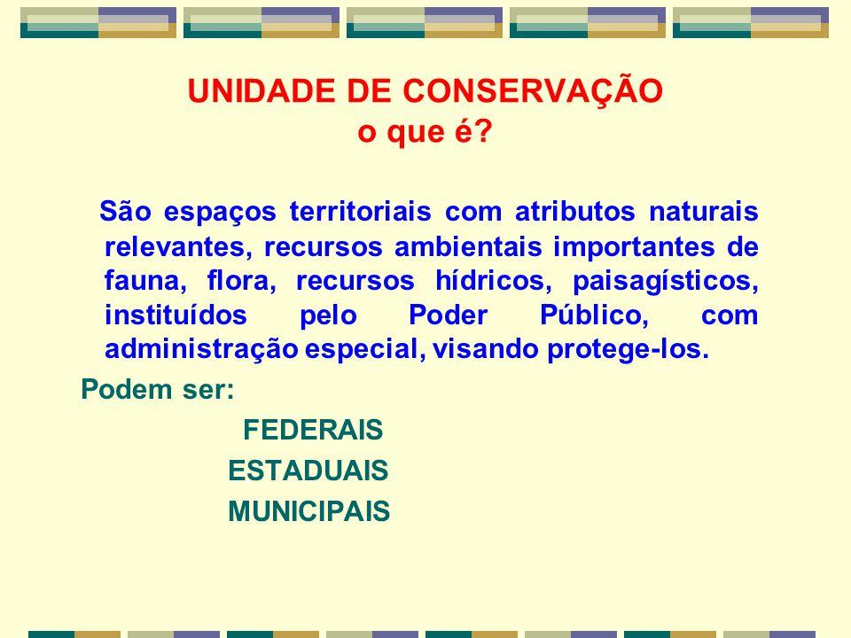 UNIDADE DE CONSERVAÇÃO o que é? São espaços territoriais com atributos naturais relevantes, recursos ambientais importantes de fauna, flora, recursos