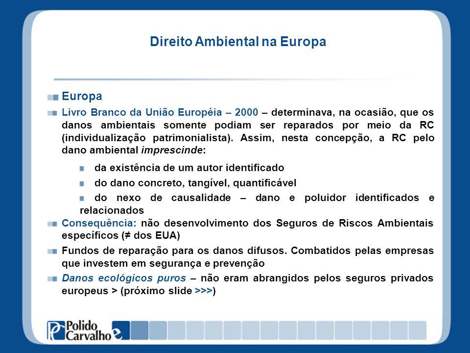 Direito Ambiental na Europa Europa Livro Branco da União Européia – 2000 – determinava, na ocasião, que os danos ambientais somente podiam ser reparad