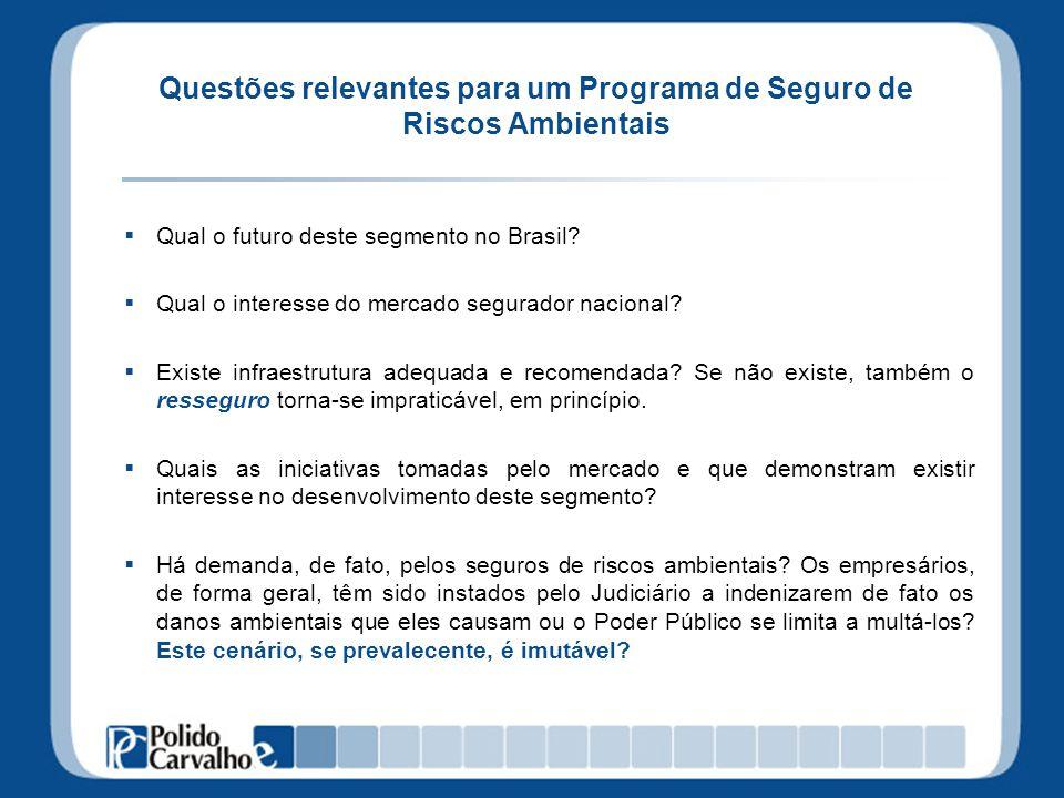 Questões relevantes para um Programa de Seguro de Riscos Ambientais Qual o futuro deste segmento no Brasil? Qual o interesse do mercado segurador naci