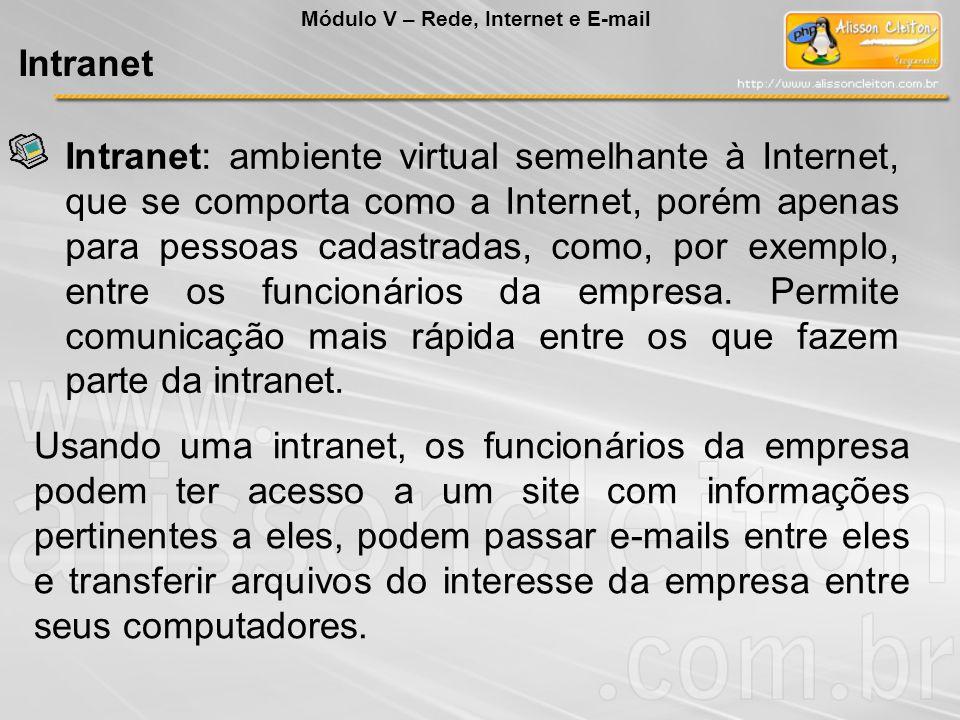 Intranet: ambiente virtual semelhante à Internet, que se comporta como a Internet, porém apenas para pessoas cadastradas, como, por exemplo, entre os funcionários da empresa.