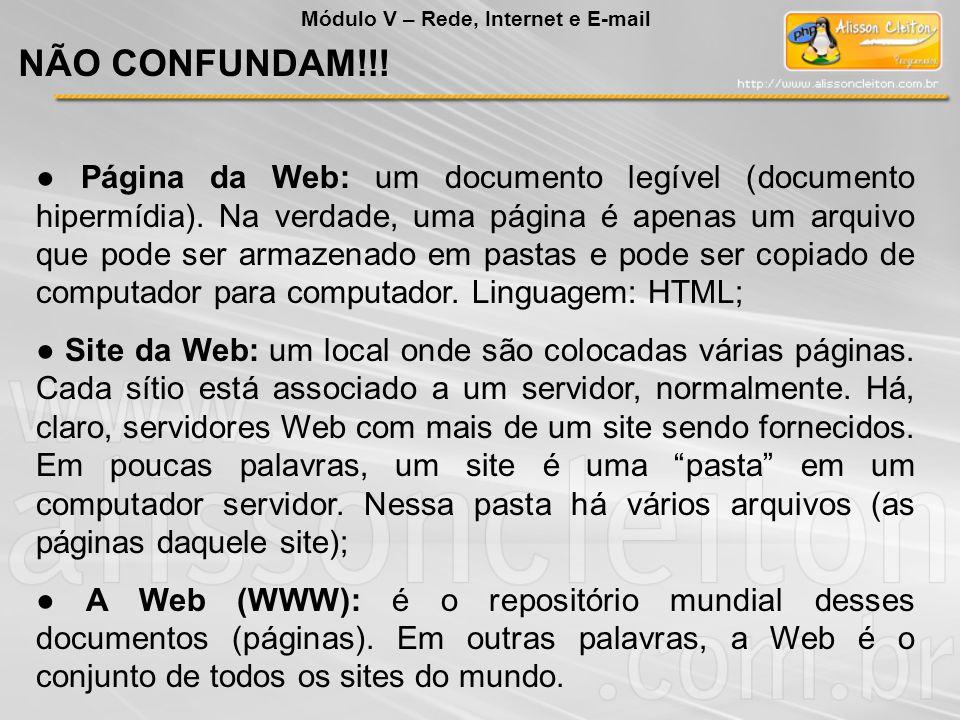 Página da Web: um documento legível (documento hipermídia). Na verdade, uma página é apenas um arquivo que pode ser armazenado em pastas e pode ser co