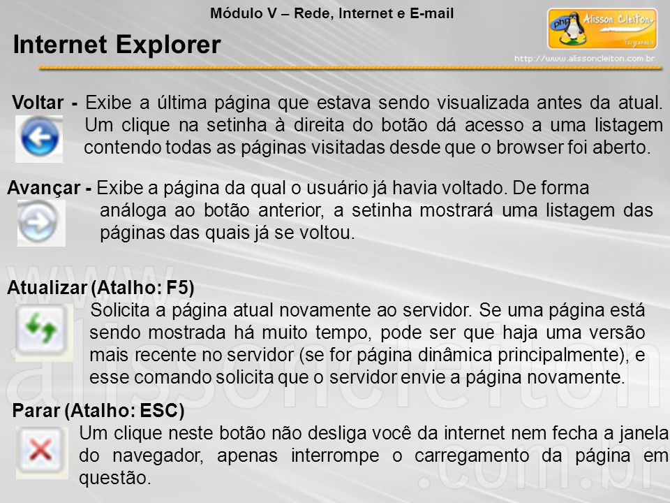 Módulo V – Rede, Internet e E-mail Internet Explorer Voltar - Exibe a última página que estava sendo visualizada antes da atual.