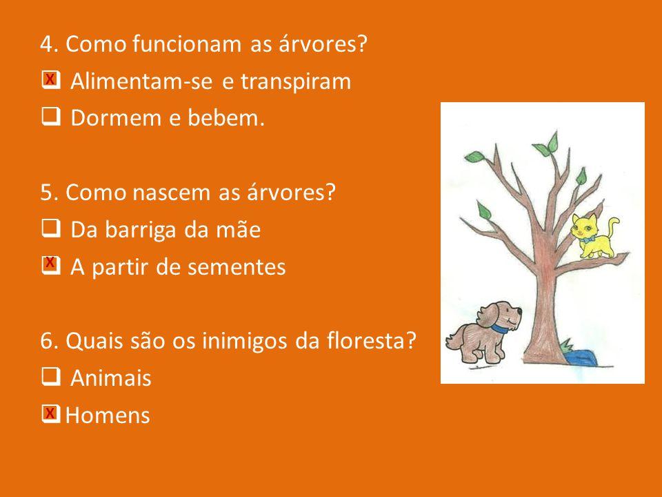 1. Porque são as florestas tão importantes? Porque desempenham funções de protecção. Porque servem para brincar 2. Como são as árvores? Não andam nem