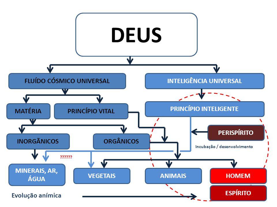 DEUS FLUÍDO CÓSMICO UNIVERSALINTELIGÊNCIA UNIVERSAL PRINCÍPIO INTELIGENTE PRINCÍPIO VITALMATÉRIA ORGÂNICOSINORGÃNICOS MINERAIS, AR, ÁGUA HOMEMANIMAISV