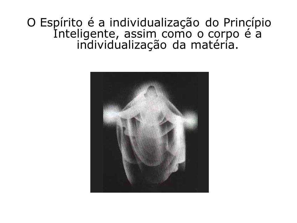 O Espírito é a individualização do Princípio Inteligente, assim como o corpo é a individualização da matéria.