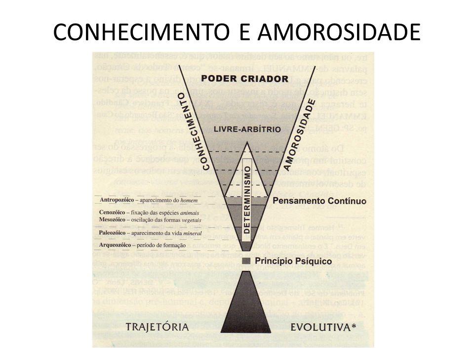CONHECIMENTO E AMOROSIDADE