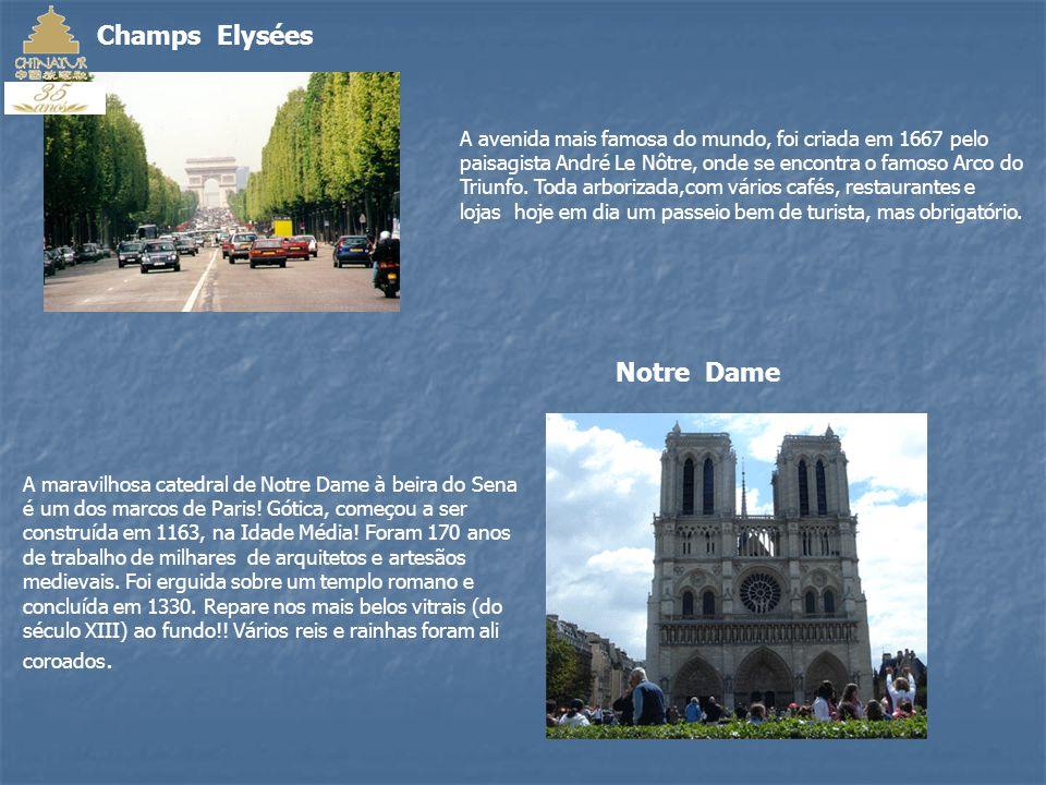 A melhor maneira de conhecer Paris é à pé, andar e respirar o arzinho francês; seus aromas, seus sabores...