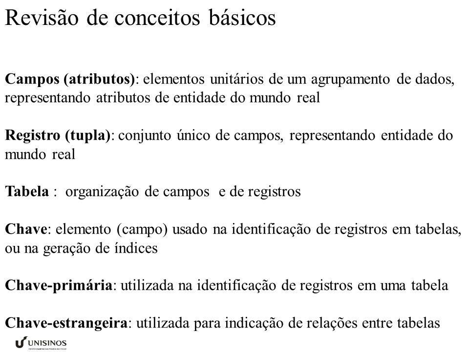 Campos (atributos): elementos unitários de um agrupamento de dados, representando atributos de entidade do mundo real Registro (tupla): conjunto único