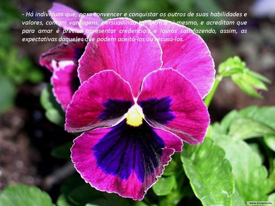Não peças amor e afeto, antes de tudo dê a ti mesmo e em seguida aos outros, sem mesmo cobrar taxas de gratidão e reconhecimento.