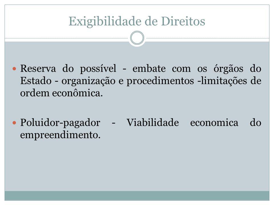 Exigibilidade de Direitos Reserva do possível - embate com os órgãos do Estado - organização e procedimentos -limitações de ordem econômica. Poluidor-