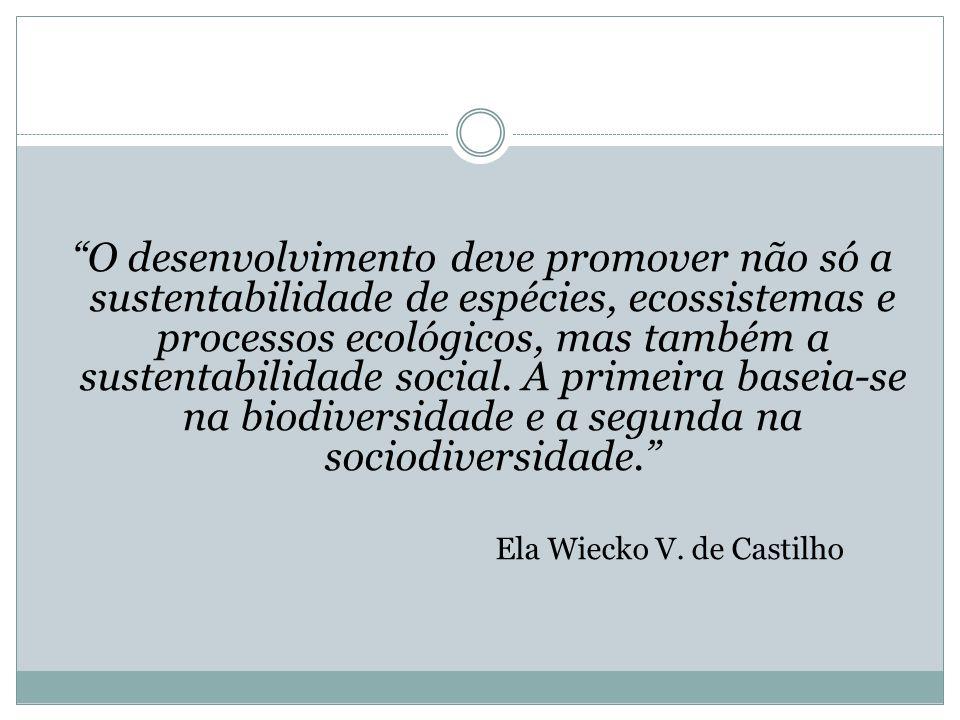 O desenvolvimento deve promover não só a sustentabilidade de espécies, ecossistemas e processos ecológicos, mas também a sustentabilidade social. A pr