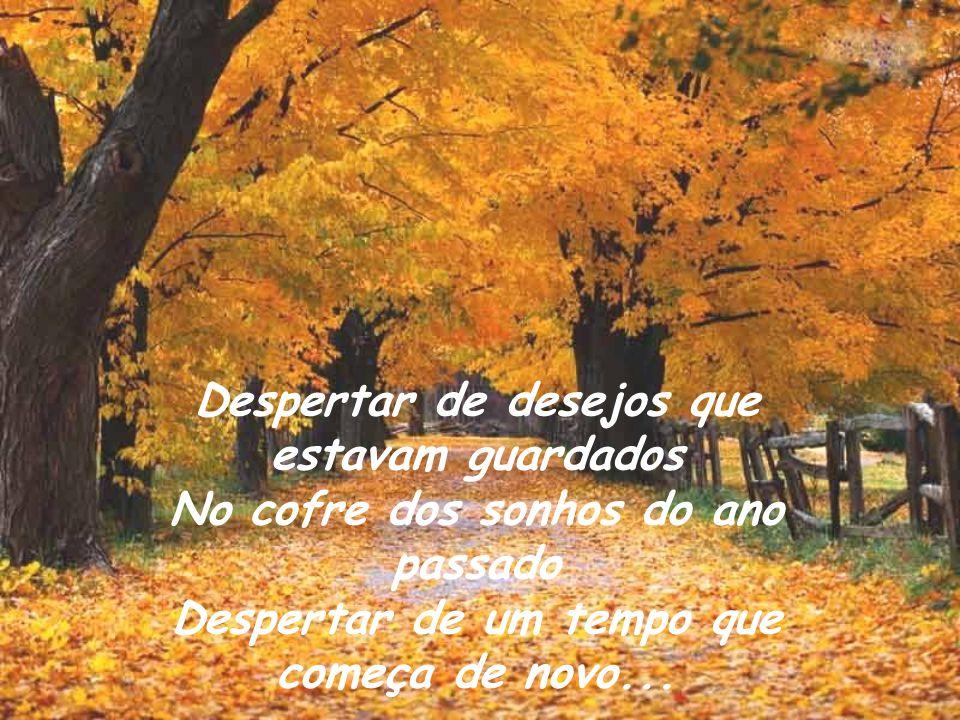 Despertar de desejos que estavam guardados No cofre dos sonhos do ano passado Despertar de um tempo que começa de novo...