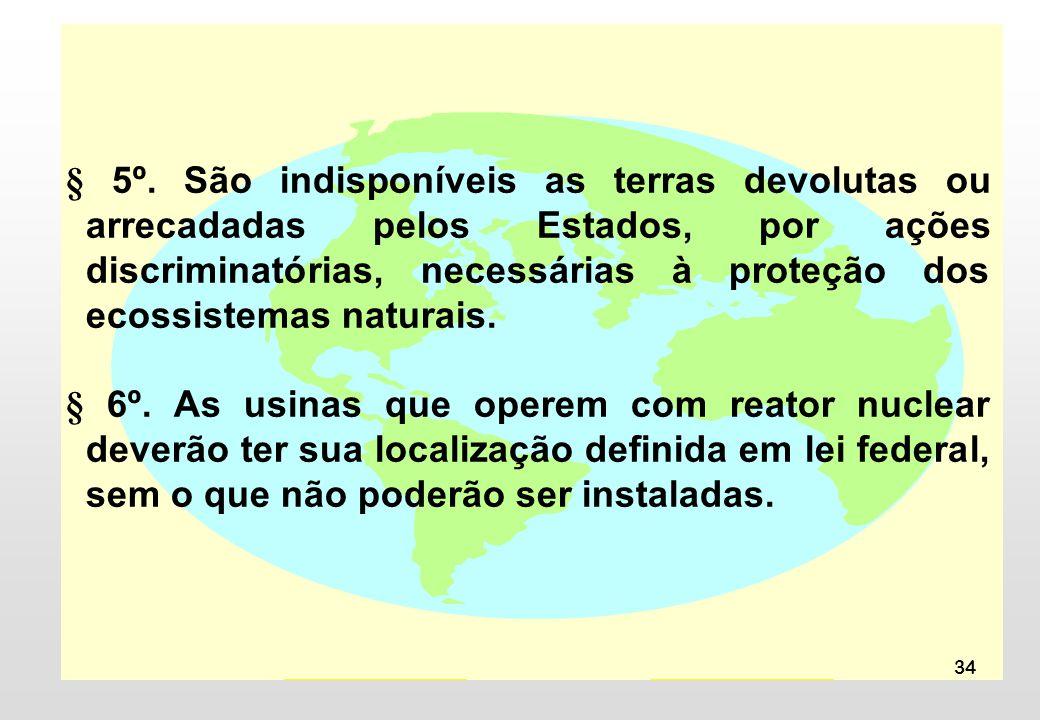 34 § 5º. São indisponíveis as terras devolutas ou arrecadadas pelos Estados, por ações discriminatórias, necessárias à proteção dos ecossistemas natur