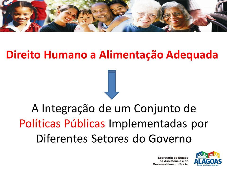 A Integração de um Conjunto de Políticas Públicas Implementadas por Diferentes Setores do Governo Direito Humano a Alimentação Adequada