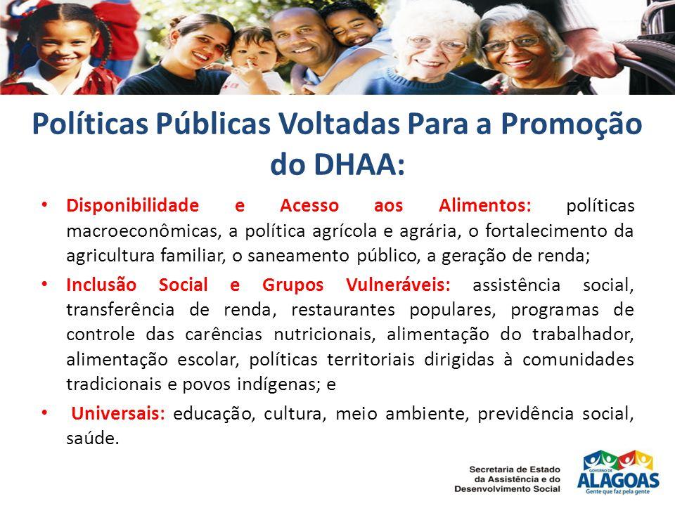 Políticas Públicas Voltadas Para a Promoção do DHAA: Disponibilidade e Acesso aos Alimentos: políticas macroeconômicas, a política agrícola e agrária,