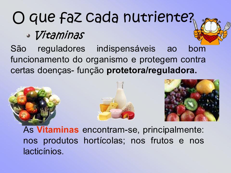 Guilherme Marques 6ºD nº 15