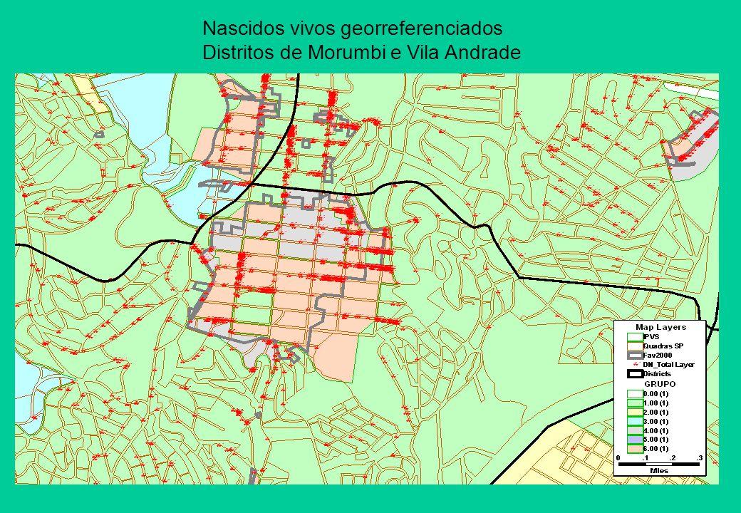 Nascidos vivos georreferenciados Distritos de Morumbi e Vila Andrade