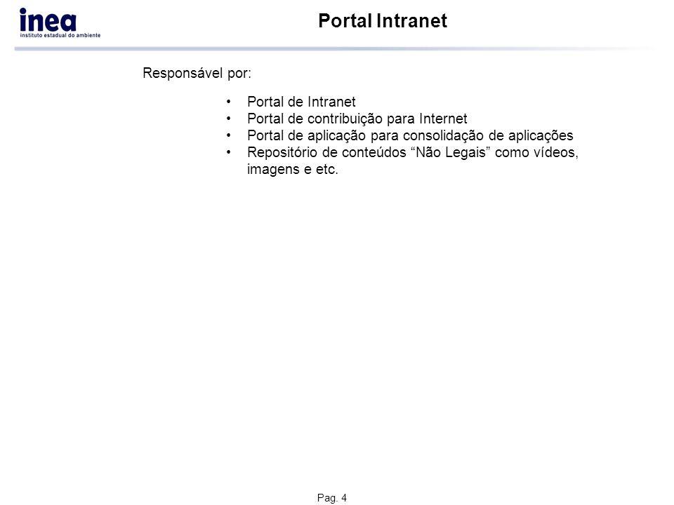Pag. 4 Portal Intranet Portal de Intranet Portal de contribuição para Internet Portal de aplicação para consolidação de aplicações Repositório de cont