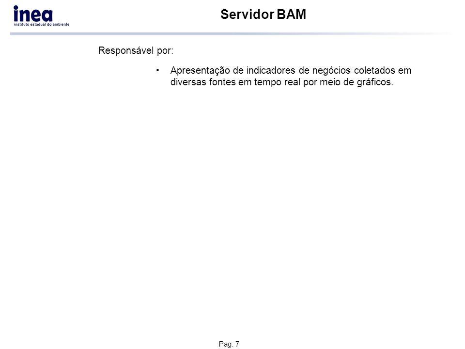 Pag. 7 Servidor BAM Apresentação de indicadores de negócios coletados em diversas fontes em tempo real por meio de gráficos. Responsável por: